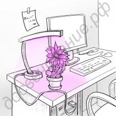 """Настольная лампа """"Мира"""" для растений с питанием от USB-порта 5В"""